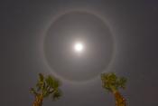 Halo Images (Sun & Moon)