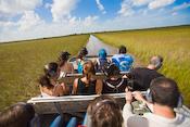Florida Everglades Images