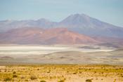 Altiplano Bolivia Images