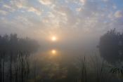 Fog Images