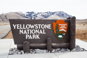 Yellowstone Park  Images